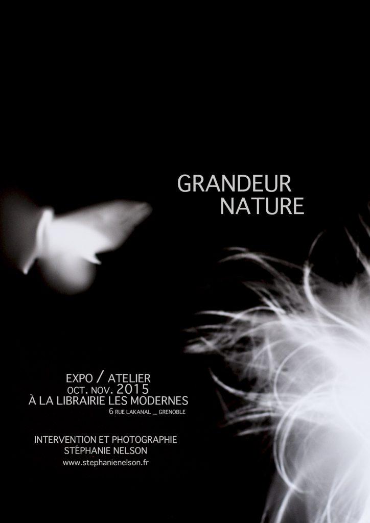 Affiche exposition Grandeur Nature aux Modernes, Grenoble 2015